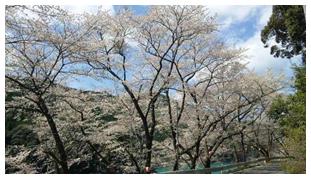 和歌山県南部